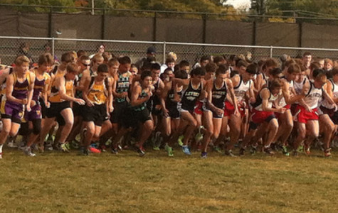Boys Cross Country Survives Niles West Invite
