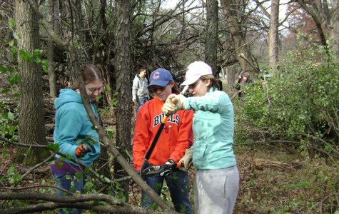 Ecology Club Members Work To Preserve Local Environment