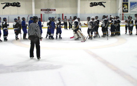 Eagles Hockey Wins Season Opener
