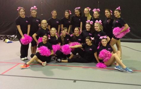 Leydenette's Pink For Zumba Fundraiser