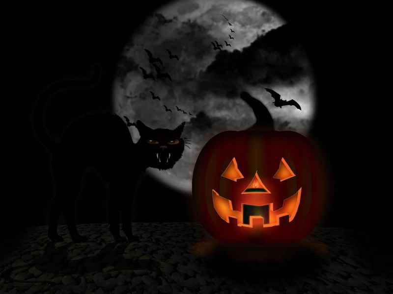 Halloween+Horror+Stories