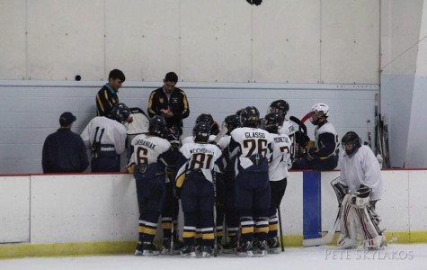 Leyden Hockey: Young and New