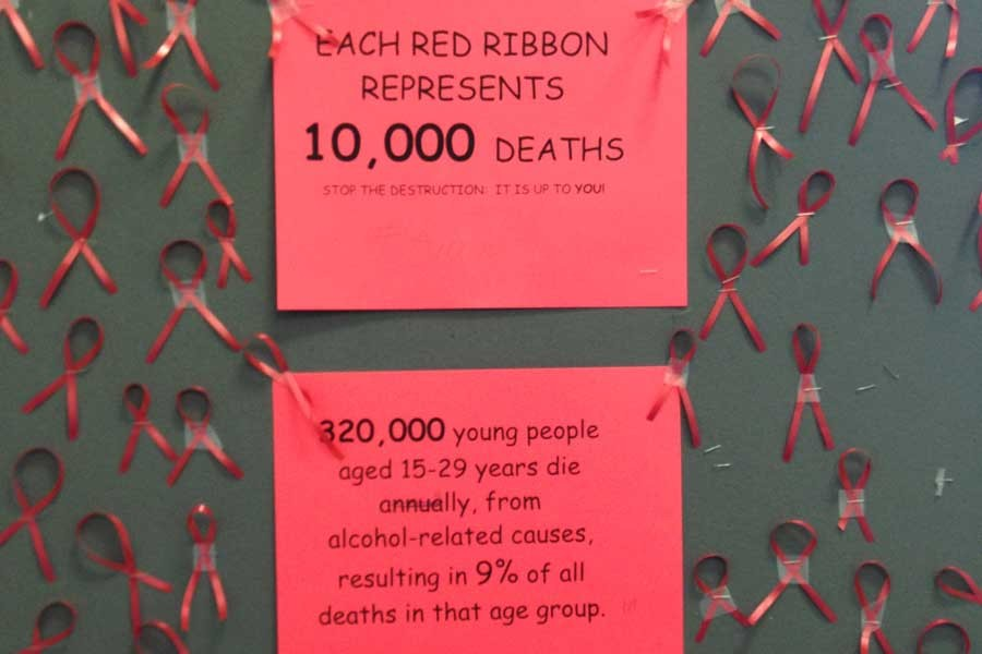 Snowball decorated bulletin boards around school with tiny red ribbons that represents a certain number of deaths due to drugs/alcohol each year