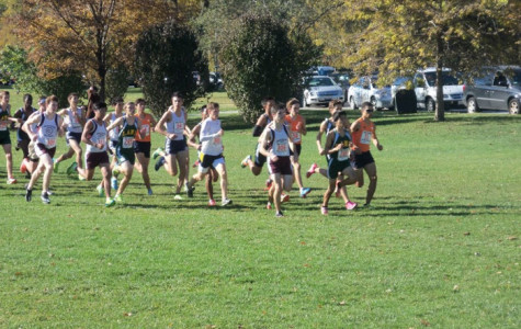 Boys and Girls Cross Country Soaring Into Sectionals
