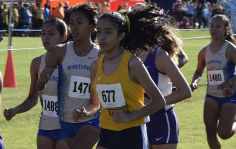 Leyden's XC team back up and running