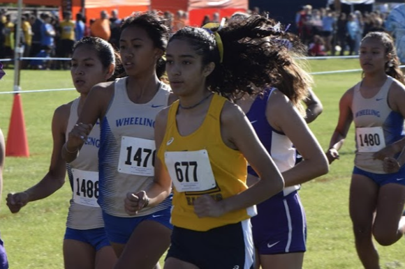 Sophomore Stephanie Dominguez focused during her race