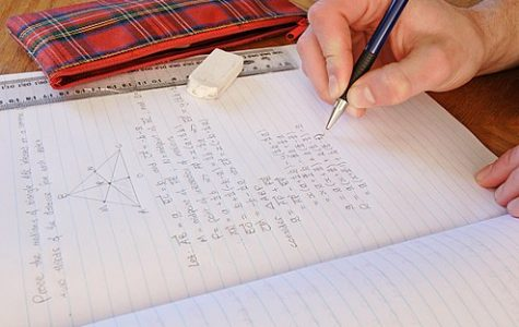 No homework should be given to students