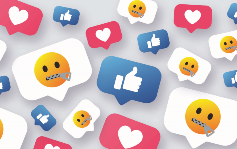 Social Media: Unintended Harm